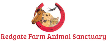 Redgate Farm Animal Sanctuary